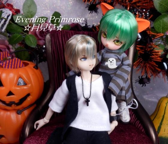 かぼちゃ12