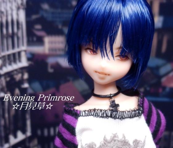 lapis-lazuli09.jpg