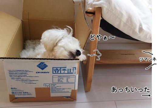12DSC_0068.jpg