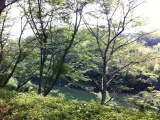 _201306豊田2_