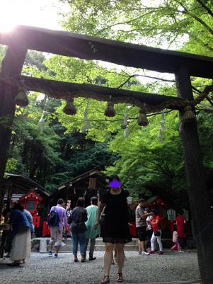 野々宮神社 鳥居