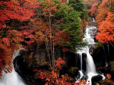 龍頭の滝の紅葉