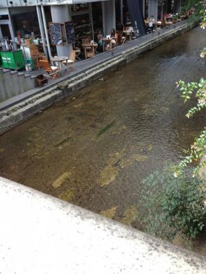 高瀬川沿いのカフェ