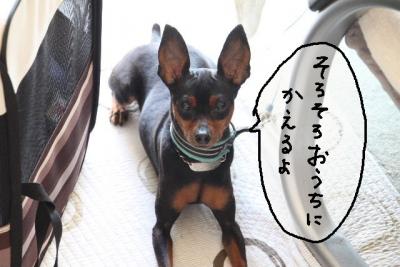 2013_09_23_9999_15.jpg