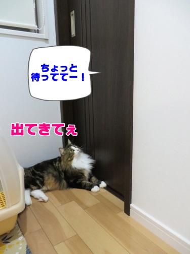amae3_text.jpg