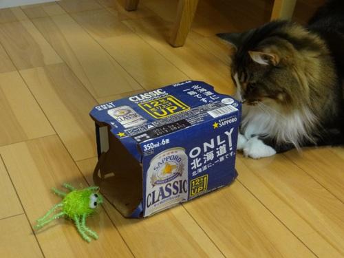 beerpack2.jpg