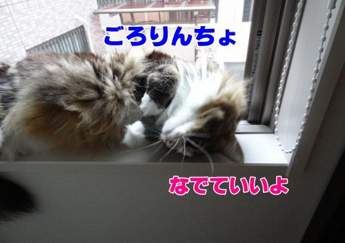 frame5_text.jpg