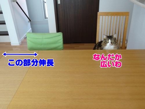 guest2_text.jpg