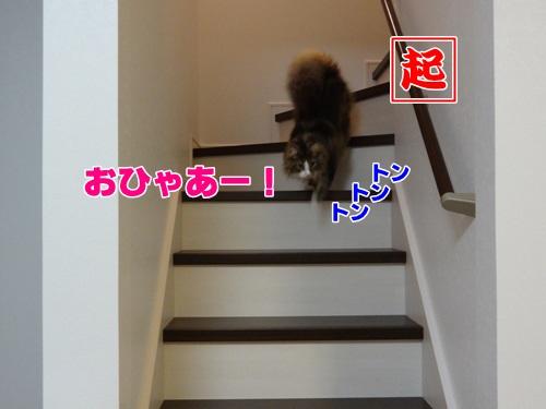 neoki2_text.jpg