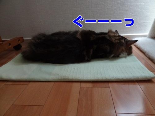 oversleep3_text.jpg