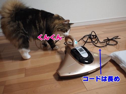 raycop4_text.jpg