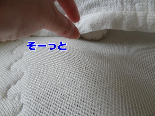 sheet3_text.jpg