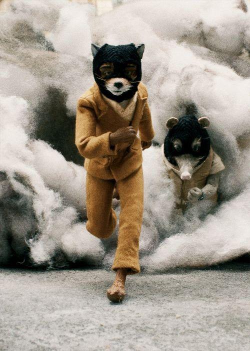 24-fantastic-mr-fox-4-952c8f3b-sz500x700-animate.jpg