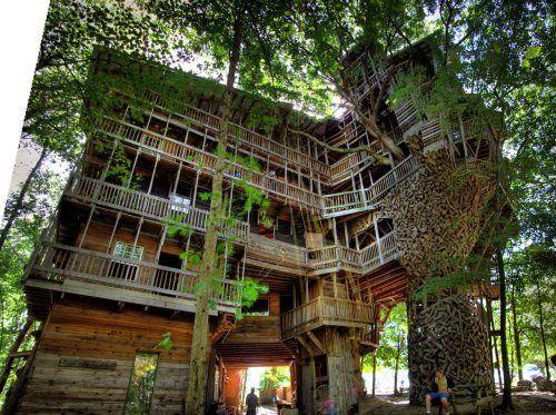 dream-tree-house-19.jpg