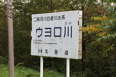 ウヨロ川131006p2