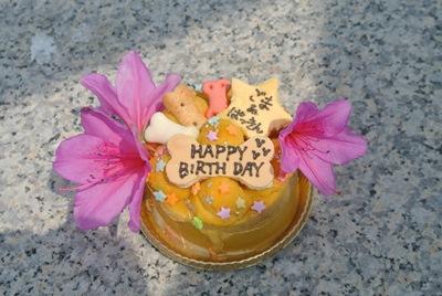 5.6 ケーキ