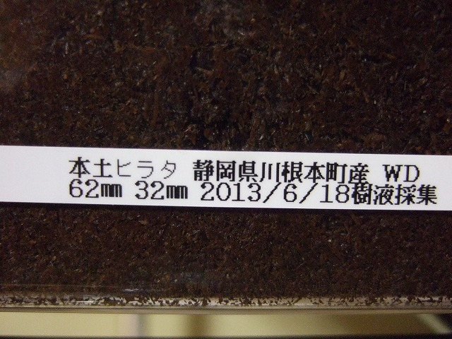 raberu2.jpg