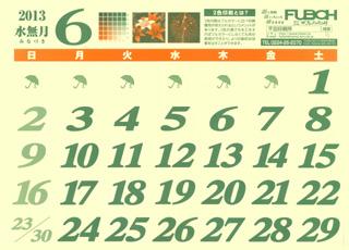 カレンダー2013年6月