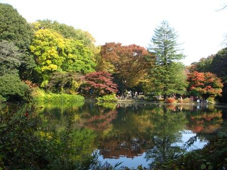 2013.11.17日立製作所庭園の池
