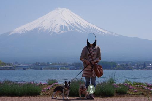 5-7富士山ふるうた