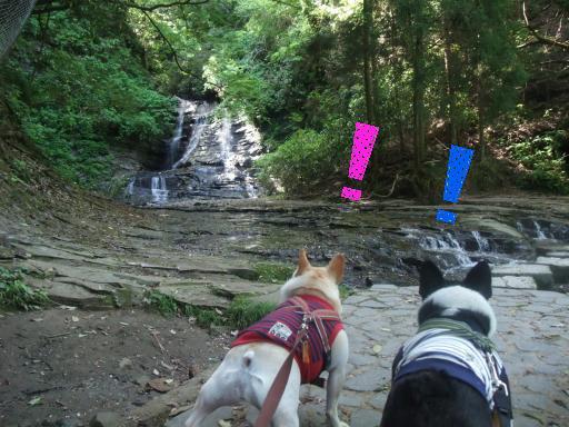 5-22小さい滝