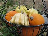 10-28かぼちゃの飾り1