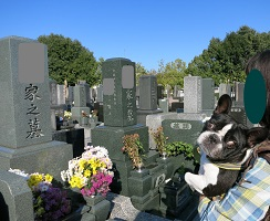 11-19お墓参りふる