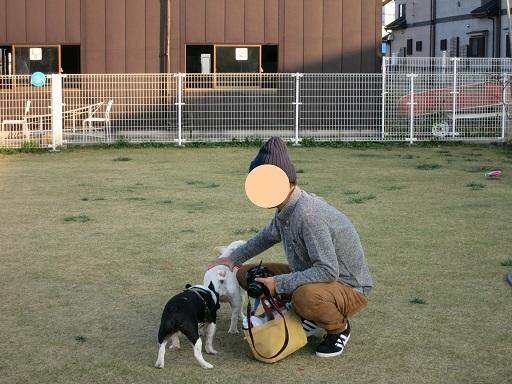 11-19ふるらむちゃん