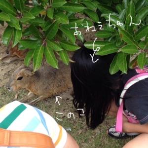 fc2blog_20130924203757ae6.jpg