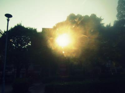 130512夕の陽