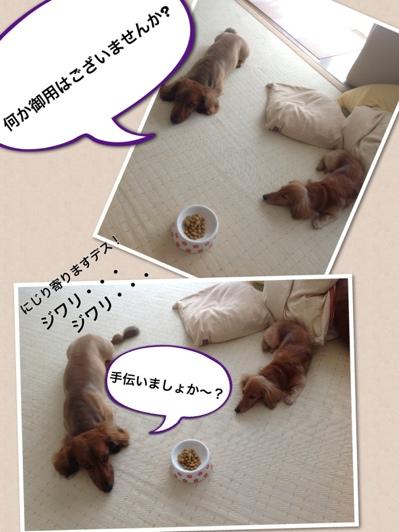 fc2blog_201305311149222df.jpg