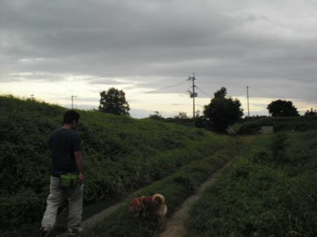 taifuu2_201308292247041bf.jpg