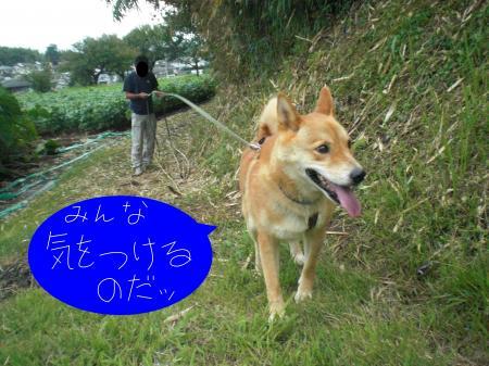 taifuu4.jpg