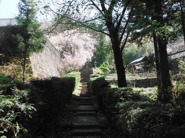 塩田城④ (148)
