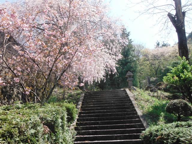 塩田城④ (149)