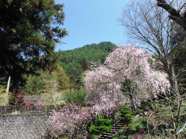 塩田城④ (159)