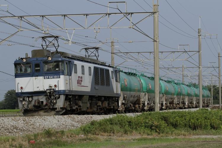 Nigata-485&583 088 (750x501)