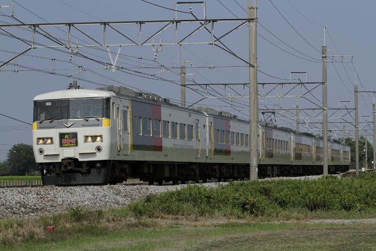 Nigata-485&583 095 (750x501)