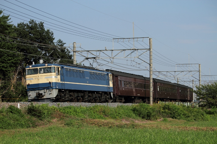 EF65-501 024 (750x500)