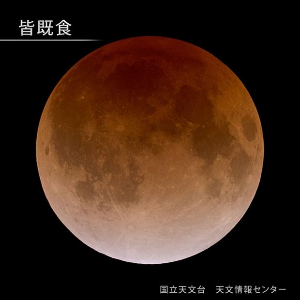 total-eclipse-l_R.jpg