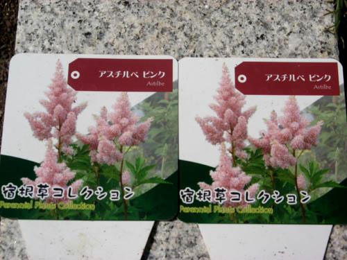 花を植える-6