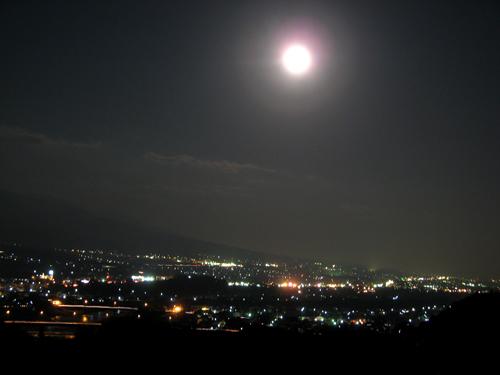 夜の庭-2
