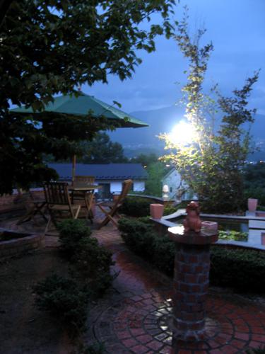 夜の庭-4