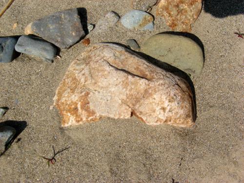 河原の石探し-2
