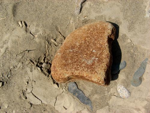 河原の石探し-3