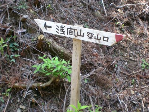 CIMG6646_th.jpg