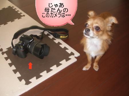 このカメラは