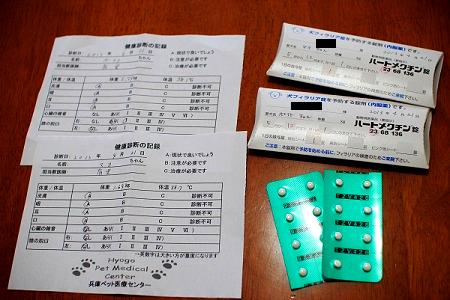 健康診断結果&フィラリア予防薬8ヶ月分