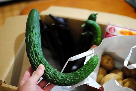 野菜が届いた