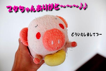 豚さんに感謝